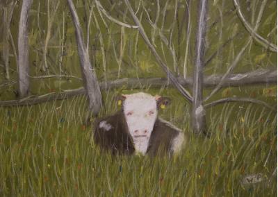 Die Kuh am Wegesrand nach Kandern