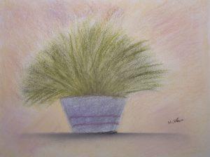 Stillleben Zitronengras im Blumentopf