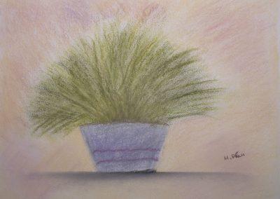 Moderne Stillleben Kunst: Zitronengras im Blumentopf