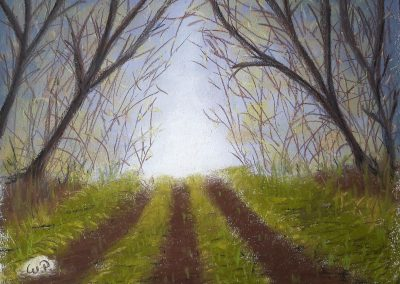 Pastellmalerei Landschaften am Wäldchen