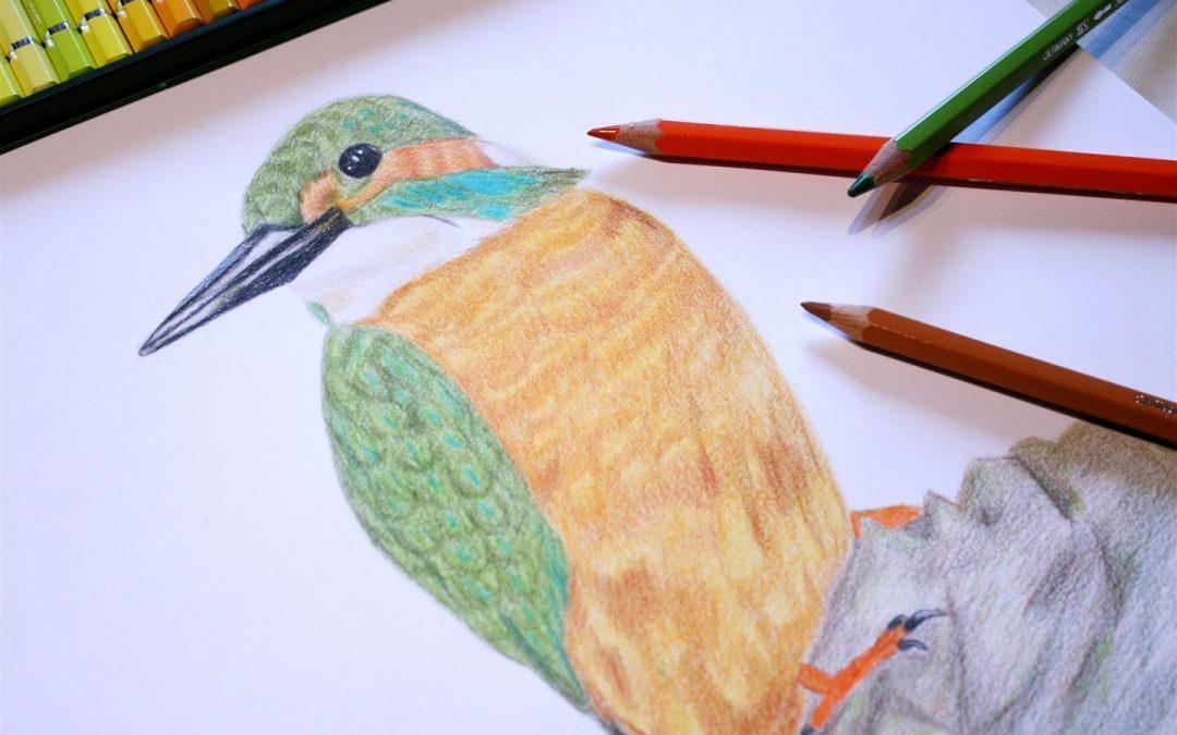 Zeichnen für Anfänger Kurs Kunstschule Bünde