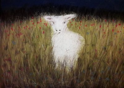 Schaf malen mit Pastellkreiden