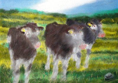 Naive Malerei - Drei Kühe blicken in das Weserbergland